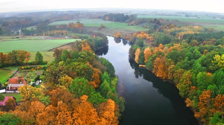 poland : Aerial view of river and forest at autumn, Poland
