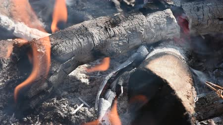 égés : Closeup flames, smoke, and ash of wood burning campfire during day with natural ambient sound Stock mozgókép