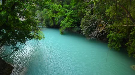 yemyeşil bitki örtüsü : Wide angle tilt shot of waterfall and turquoise blue pool surrounded by lush tropical forest in Rio la Venta Canyon in Chiapas, Mexico, with natural sound