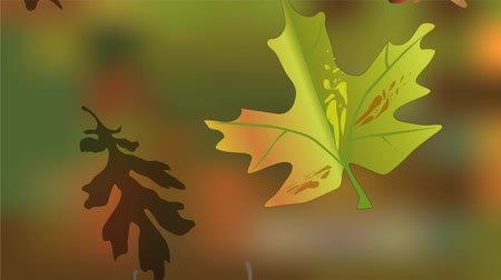 listki : Moody video autumn, falling leaves of maple and oak on green blurred background. Vibrant autumn colors, shadows, serene slow movement Wideo