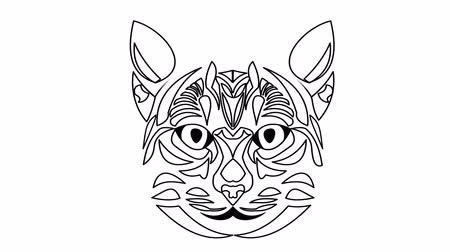 grey cat : Cat head animated drawing. Video in white and black outline design.