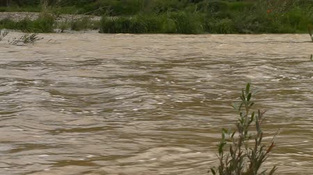 plunging : River burst its banks. Muddy water Stock Footage