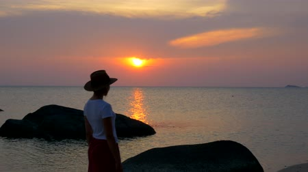 wistful : A girl is walking along the beach at sunset. Stock Footage