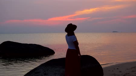 wistful : girl in a hat strolls along the beach at sunset