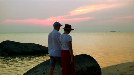 amoroso : A loving couple is walking at sunset on the beach. Vídeos