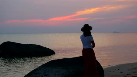 wistful : A thoughtful girl is walking along the beach at sunset.