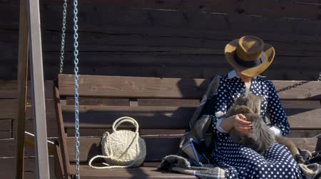 mírumilovnost : girl resting on a wooden swing in the village with a cat Dostupné videozáznamy