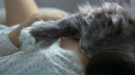 A gray cat sleeps on the girl's chest.