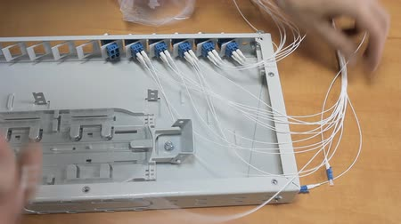 gigabit : Optical patch panel in the server room