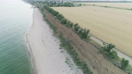 Aerial View of Field Near the Azov Sea Stock Footage