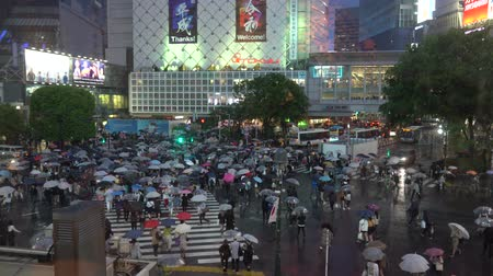 pedestres : Shibuya, Tokyo, Japan - May 1, 2019 : First day in Reiwa period ( Reiwa jidai ) pedestrians crosswalk at Shibuya district in a rainy day. Shibuya Crossing is one of the busiest crosswalks in the world.
