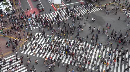 tokyo station : Shibuya Crossing is one of the busiest crosswalks in the world. Pedestrians crosswalk at Shibuya district. Tokyo, Japan Stock Footage