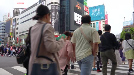 Shibuya Crossing in day time (4K UHD time-lapse), camera long shot selective focus normal speed, pedestrians crosswalk a T Shibuya District. Tokyo, Japan-May 4, 2019 Стоковые видеозаписи