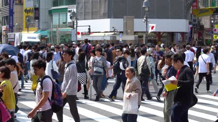 Tokyo, Japan-May 4, 2021: Close up pedestrians walking on Shibuya Crossing in day time (Slow Motion Video). Camera long shot, selective focus Стоковые видеозаписи