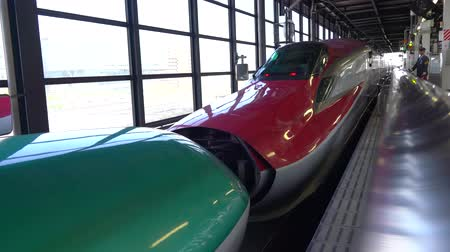 koppeling : Shinkansen Hayabusa and Komachi combination and separation at JR Morioka Station