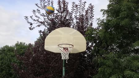 abroncs : Basketball Swish Shot on an Outdoor Hoop 01