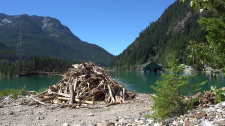 diablo : North Cascades Diablo Lake Woodpile