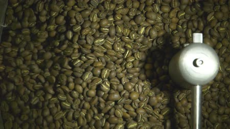 coffee grounds : Raw roasted coffee beans drying in factory machine, coffee production, close up slow motion shot