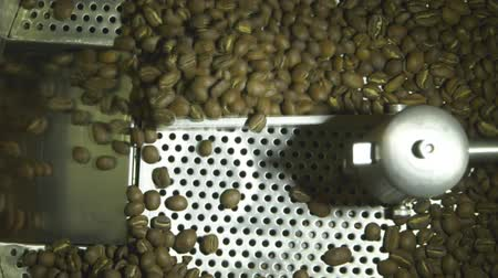 coffee grounds : Slow motion close up shot of raw coffee beans drying in machine, roasted coffee industry production Stock Footage
