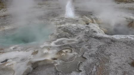 věrný : Beautiful landscapes of Yellowstone national park old hot geysers erupting in 4k