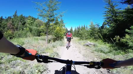 ciclismo : Bikers biking riding mountain bike on dangerous forest road in nature landscape of Freund cnyon in first person 4k pov