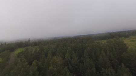 bezmotorové létání : 4k aerial drone camera view of big green countryside hill field with trees and grass in summer fog mist grey rain clouds