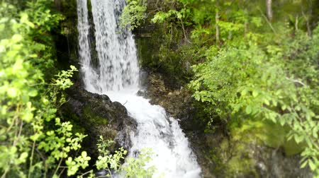 maravilha : Small river waterfall running in green tree mountain cliff forest in stunning 4k steady wild nature landscape shot Stock Footage