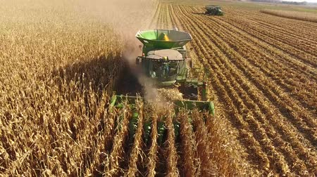 milho : 4k drone aerial shot of huge agriculture combine trucks machines vehicles harvesting organic wheat crops on farm field