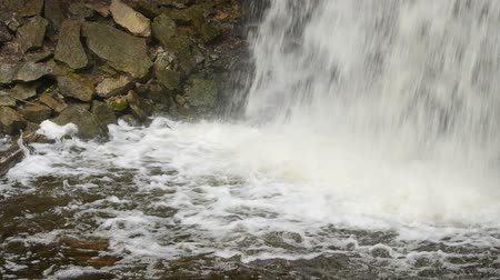 hilton : Base of Hilton Falls waterfall, near Milton, Ontario, Canada. Other views available. 00183 Stock Footage