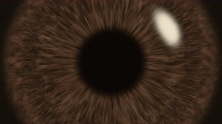dilated pupil : Brown Eye Iris Pupil Dilates and Contracts