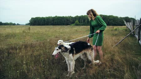 hunting dog : girl in green dress with two Russian greyhounds