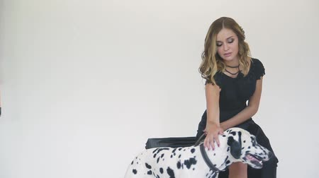 hímzés : beautiful attractive girl in a black dress with a Dalmatian dog posing for a photographer in the studio