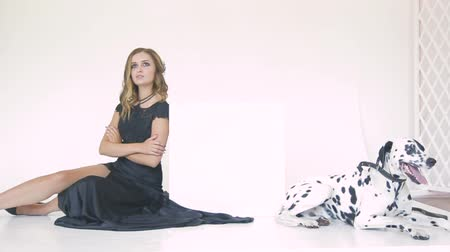 curly haired : beautiful attractive girl in a black dress with a Dalmatian dog posing for a photographer in the studio