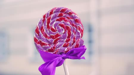 леденец : large round colored candy on a stick closeup