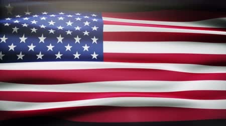 bandeira : USA Flag waving in the wind
