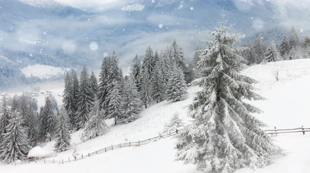 New Year,christmas, winter background