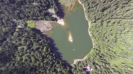 olhando a câmera : Aerial view of Lake Synevir in Carpathian Mountains in Ukraine
