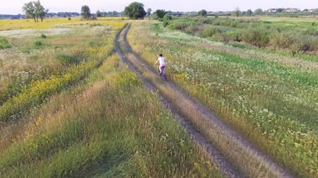 bikers : Aerial footage of female riding bike. Countryside road. Agricultural field in summer. Ukrainian nature Stock Footage