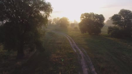 solitário : foggy road. River valley bent early morning fog clouds. yellow orange sunrise horizon. Aerial drone beautiful Ukraine nature landscape. Romantic cinematic mood