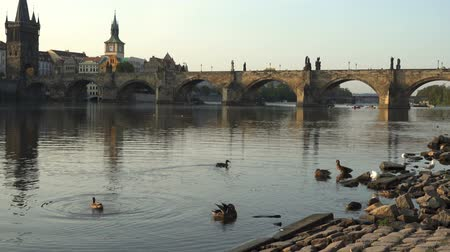 charles bridge : Charles Bridge over the River Vitava, Czech Republic at sunset
