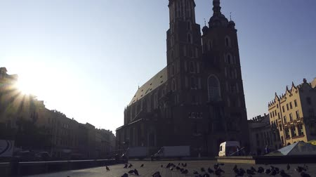 クラクフ : Marys Church on the main square in historical center of Krakow, Poland 動画素材