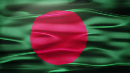 alegori : Bangladesh Realistic Seamless Loop Flag of Afghanistan Waving In The Wind With Highly Detailed Fabric Texture. Stok Video