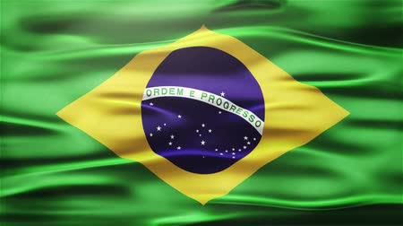 bhutan : Realistic Seamless Loop Flag of Brazil Waving In The Wind With Highly Detailed Fabric Texture.