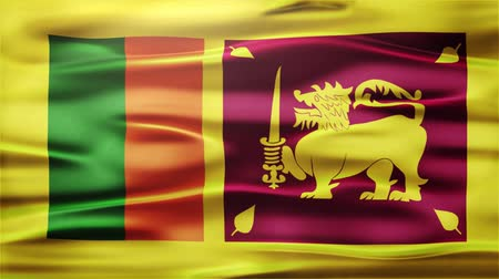 bruxelas : Realistic Seamless Loop Flag of Sri Lanka Waving In The Wind With Highly Detailed Fabric Texture. Stock Footage