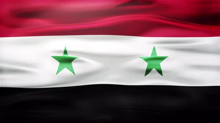 alegori : Realistic Seamless Loop Flag of Syria Waving In The Wind With Highly Detailed Fabric Texture. Stok Video