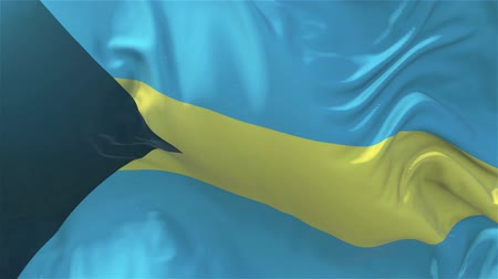 nejlon : Bahamas Flag in Slow Motion Smooth blowing in wind seamless loop Background Stock mozgókép