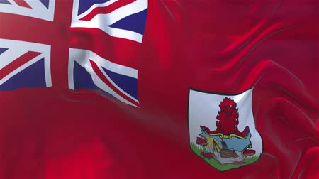 nejlon : Bermuda Flag in Slow Motion Smooth blowing in wind seamless loop Background Stock mozgókép