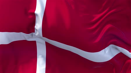 válečné loďstvo : Denmark Flag in Slow Motion Smooth blowing in wind seamless loop Background