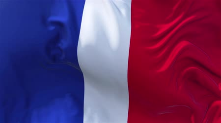 nejlon : France Flag in Slow Motion Smooth blowing in wind seamless loop Background