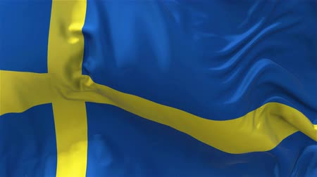 democrat : Sweden Flag in Slow Motion Smooth blowing in wind seamless loop Background